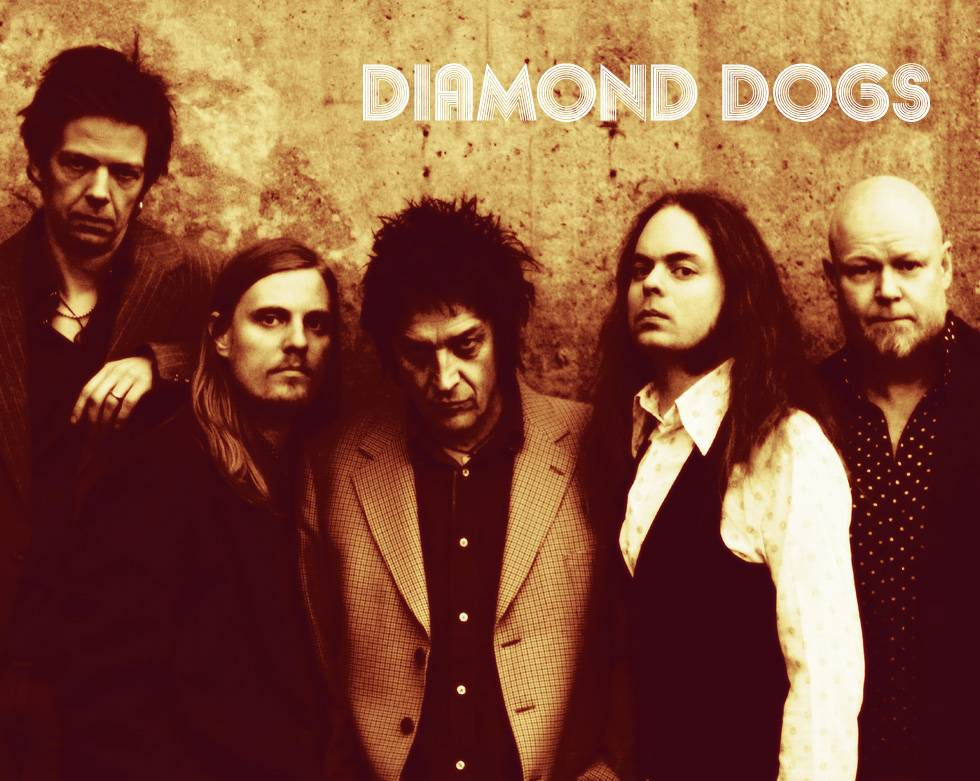 Diamond Dogs Band